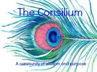 The Consilium Podcast Episode 9 Rhonda Gould