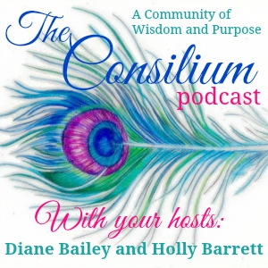 The Consilium Podcast, Episode 8, Julie Hulstein